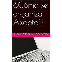 ¿Cómo se organiza Axapta?