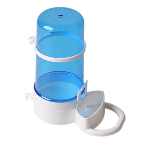 Dispensador de agua para Erizos de tierra