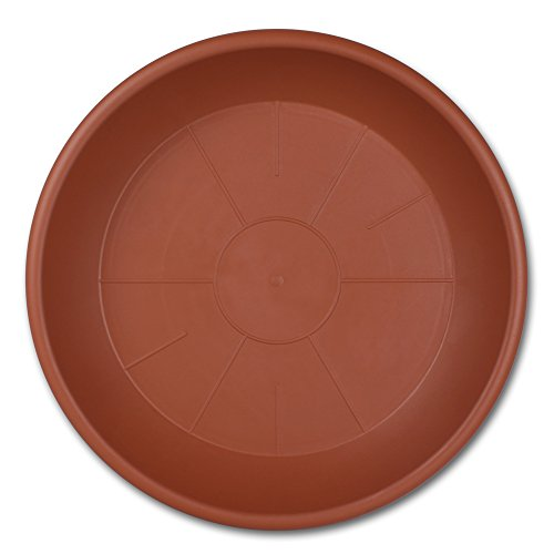 Pflanzkübel oder Untersetzer mit Farb- und Größenauswahl (58cm , Untersetzer Terrakotta )