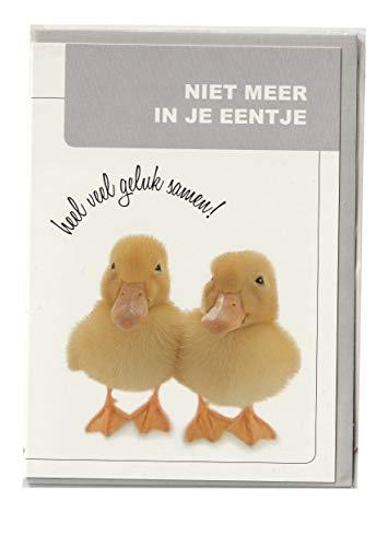 d Beeld OP Dik Papier Umhüllen. kwaliteit: Schaft nederland Tekst: JARIG onderwerp: 2 eend baby AT4022 ()