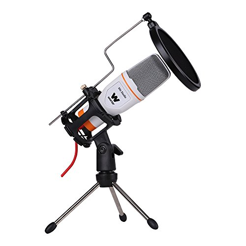 Imagen de Micrófonos de Condensador Woxter por menos de 20 euros.