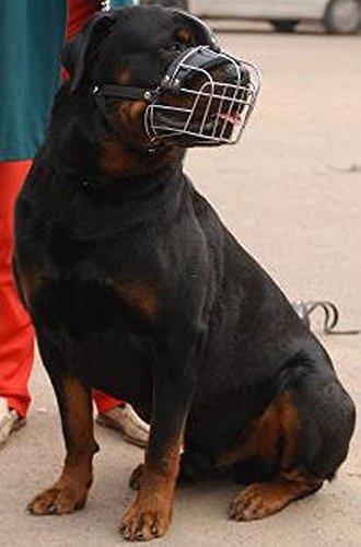 Starker Hundemaulkorb aus Metall, mit Riemen zwischen den Augen, für Rottweiler und Dogge Drei Riemen