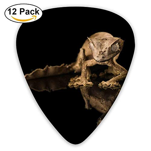 Gecko Reflection Black Reptile Eyes Gray Guitar Pick 12pack,Standard Bass Guitarist Music Gifts Gecko Guard