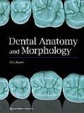 Dental Anatomy and Morphology...
