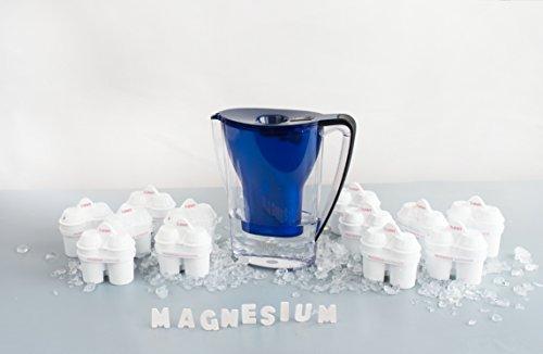 BWT - Wasserfilter 2,7 Liter Penguin Edition Dunkelblau inkl. Jahrespackung BWT Filterkartuschen 12 Stk
