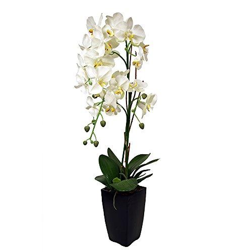 Ligne Déco 434431WO-W Orchidée artificielle en Pot 81 cm