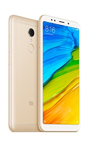 Redmi 5 (Gold, 64GB)