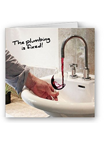 humorous-greeting-card-rm0537-blank-birthday-the-plumbing-is-fixed