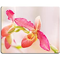 luxlady Naturkautschuk Gaming Mousepads Paphiopedilum Orchidee gegen Tropical grünen Bild-ID 26381249