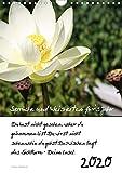 Sprüche und Weisheiten für´ s Jahr (Wandkalender 2020 DIN A4 hoch): Blumen und Sprüche (Planer, 14 Seiten ) (CALVENDO Natur)