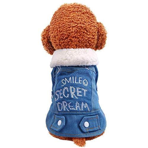 Butter Gesicht Kostüm - Fenverk Hundekleidung Katzenbekleidung Shirts FüR Hunde