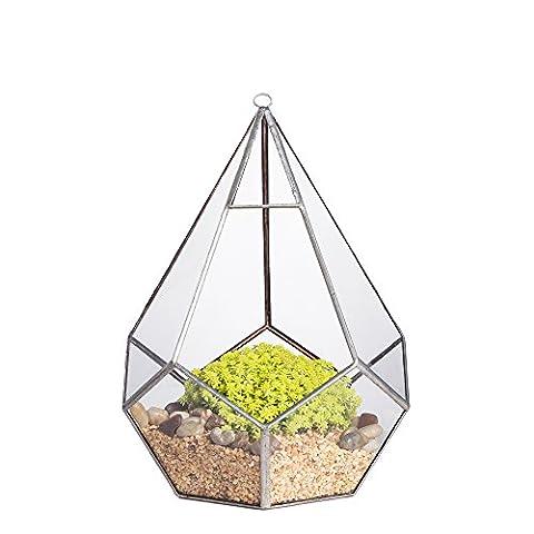 1face ouverture de suspension moderne géométrique polyèdre Femme Diamant Forme de terrarium en verre transparent Fleurs (5faces Triangle avec 6faces Pentagone) x 17,2x 17,2x 21,8cm (22,8cm avec bélière) Argent