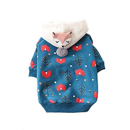 CWYP 2019 Neue Hundekleidung mit Kapuze Baumwollpullover Haustierkleidung für kleine Hunde sowie Samtkleid für Haustiere süße Katze Kleidung (Beste Neue Halloween Kostüme 2019)