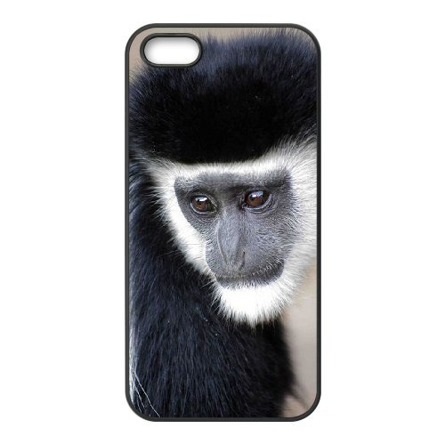 LP-LG Phone Case Of Monkey For iPhone 5,5S [Pattern-6] Pattern-2