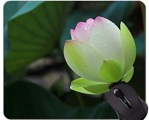 Yanteng Tappetino per Mouse Lotus Pond Antiscivolo - Tappetino per Mouse per Ufficio Bloom