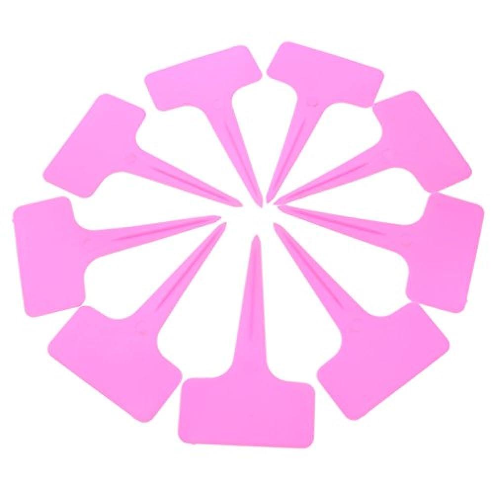 100Stück Pflanzenetiketten 6x10cm Kunststoff wasserdicht für Baumschule oder Garten wiederverwendbar pink