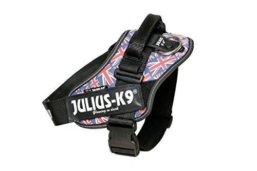 Julius-K9, 16IDC-UK-2, IDC-Powergeschirr, Hundegeschirr, Größe: 2, Britische Farben