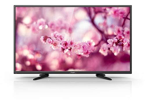 TV Televisión Televisor Engel LE4050 Ever-LED 40