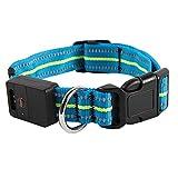 Hahaiyu LED Dog Collar reflektierende Streifen wasserdicht Multi-Funktion Ladung Licht Kragen Puppy Dog Supplies (Blau)
