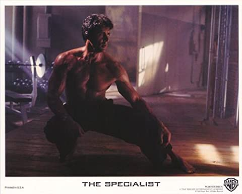 The Specialist Plakat Movie Poster (11 x 14 Inches - 28cm x 36cm) (1994) B