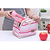 TheTickleToe Insulated Lunch Bag Thermal Stripe Tote Bags Picnic Food Lunch Box Bag For Women Girls Ladies Kids - B07KQB5YJY