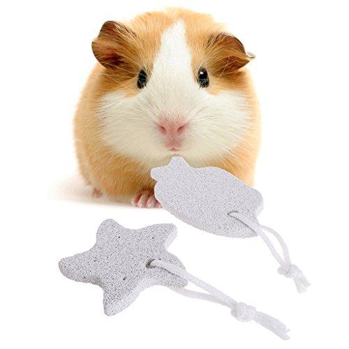 ECMQS Kleine Haustiere Kauen Spielzeug, Kalzium Mineral Zähne Schleifstein für Hamster Hase Vogel Spielzeug (Fisch)