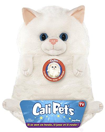 Dujardin - 22107 - Cali Pets - Chat Persan - 35 Cm