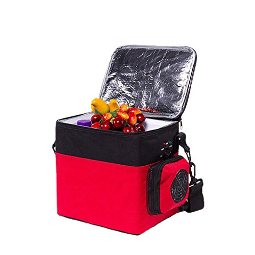 JGWJJ 6L Large Cooler Bag Soft Insulated Picnic Family Cool Bag with Hard Liner, Box Soft-Sided Cooling Bag for Camping/BBQ/Family Outdoor Activities