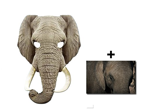 (Elefant Tier Single Karte Partei Gesichtsmasken (Maske) Enthält 6X4 (15X10Cm) starfoto)