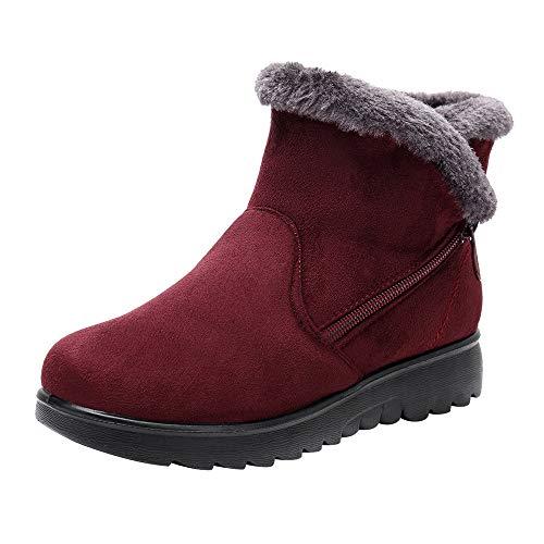 LianMengMVP Femmes Dames Bottines d'hiver Courtes Chelsea à la Cheville Chaussures en Fourrure Artificielle Chaussures Chaudes