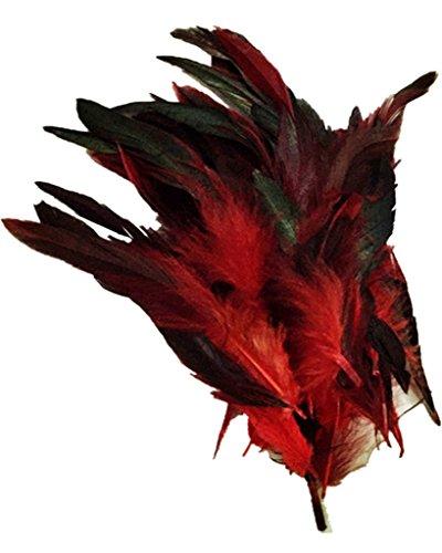 Weiß, Hut Schwarz, Rot, (ERGEOB Hahn Feder - Ideen für die Kostüme, Hüte, Home dekor circa 100 stück 12-18cm rot)
