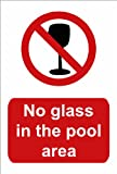 """Schwimmbad Schild, """"No Glass in the pool area"""", A5"""