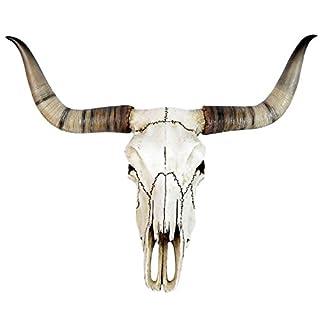 Longhorn Rinderschädel aus Kunststein 38 cm Totenschädel Schädel Geweih