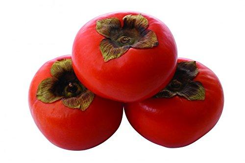 Emballage nouveau – 100 pcs Rare semences géant Grande de la fraise, grandes extra-seeds fruits douce Delicioso quatre saisons pour cadeaux, # CM001