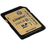 Kingston SDA10/256GB - Tarjeta SD profesional de 256 GB (UHS-I SDHC/SDXC clase 10)