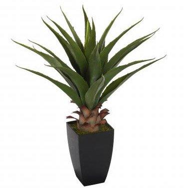 Kunstpflanze mit Übertopf, 70 cm