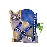 Naisidier Verstellbare Katzenleine mit Brustgurt, Starke und langlebige Leine im traditionellen Stil mit einfach zu verwendendem Halsband Haken für kleine und mittelgroße Hunde, Blau
