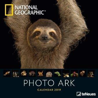 Photo Ark - Broschurkalender - Kalender 2019 - teNeues-Verlag - National Geographic - Wandkalender mit faszinierenden Tieren und Platz für Eintragungen - 30 cm x 30 cm (offen 30 cm x 60 cm) -
