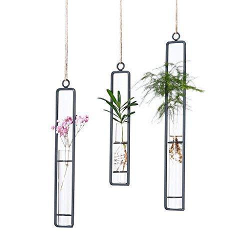 Lala Lot de 3 pc de fleurs en verre à suspendre Différentes longueurs de tubes à essai suspendus en verre, vase créatif à suspendre au mur en fer, en verre, hydroponie, pot de fleurs, vase pour jardin