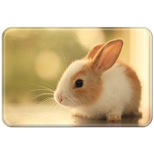 Preisvergleich Produktbild Violetpos Fußmatte Pet Farm Hase Kanin Fußmatten Mat für Innen & Außen 40 x 60 cm