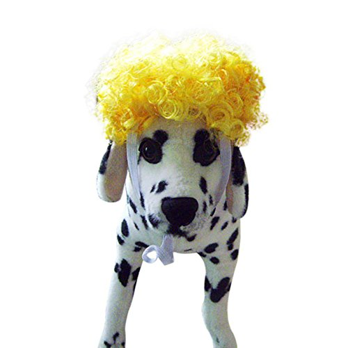 STXMALL Cat Dog Hat Curly Wigs For Dogs Synthetic Hair Adjustable Comfortable Fancy Dress