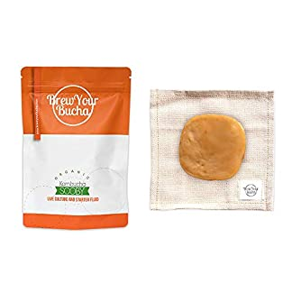 Brew-Your-Bucha-Kombucha-SCOBY-with-Highly-Concentrated-Starter-Fluid-SCOBY-Grown-with-Organic-Sugar-and-Certified-Organic-Black-Yunnan-Gold-Tea-2-SCOBY