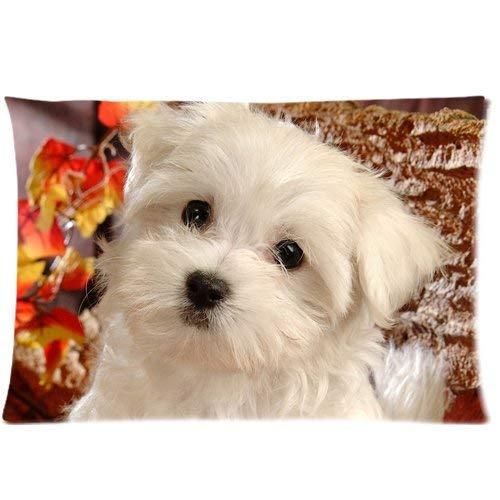 Fuyon Wamnu Cute Small Fluffy Puppy Dog Art Custom