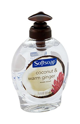 softsoap-coconut-warm-ginger-hand-wash-75-fl-oz-by-softsoap