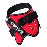 Ambiguity Hundegeschirr,Brustgurt für mittlere und große Hunde streicheln Brust Rücken Ex-Stanzen Hund Kette