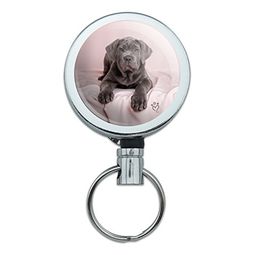 Neapel Mastiff Hund im Bett Heavy Duty Metall Retractable Reel ID Badge Key Card Tag Holder mit Gürtel Clip (Mastiff Kette)