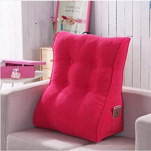 ZTD Stilvolle atmosphärische Kissen, Sofa-abnehmbares Blei-Kissen/Kissen-rückseitiges Stützkissen -41,45x55cm (18x22inch),Ff