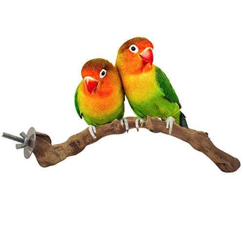 Bwogue Vögel Sitzstangen, Natur Grapevine Vogelkäfig Sitzstange für Papagei Käfige Spielzeug