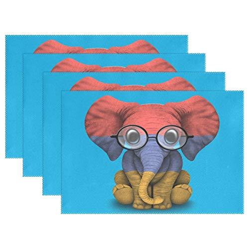 Promini Hitzebeständige Tischsets, armenische Flagge, Baby Elefant mit Brille, waschbar, Polyester, Rutschfest, waschbar, Platzsets für Küche und Esszimmer, 4 Stück