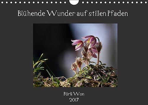 bluhende-wunder-auf-stillen-pfaden-wandkalender-2017-din-a4-quer-pflanzenschonheiten-im-laufe-der-ja